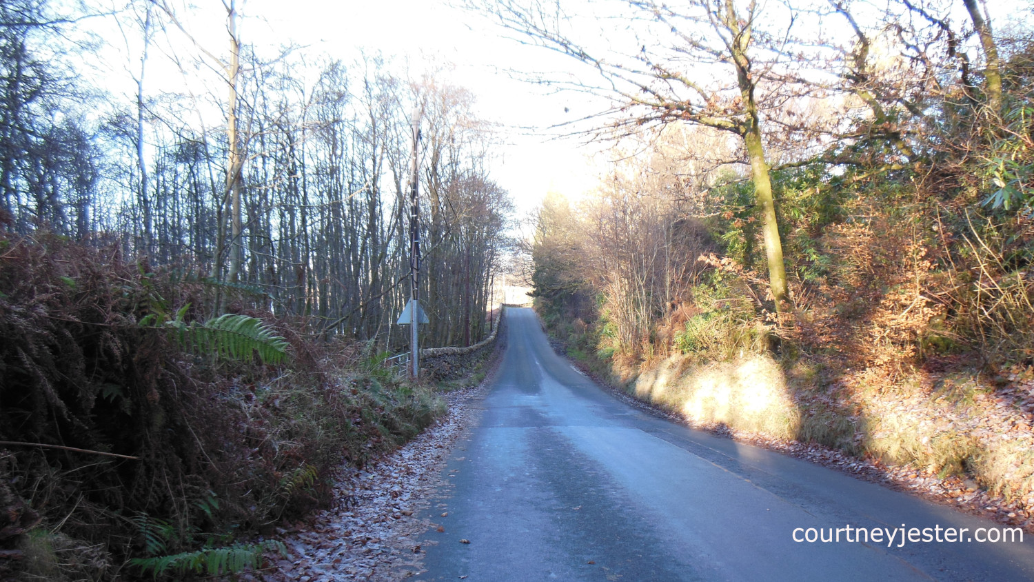 A Road in the Trossachs 2012